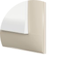 COVER PLATE BEIGE